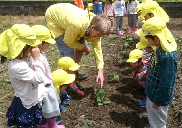 富山でイマージョン教育を取り入れたスクールは独自の効果的なプログラムが人気