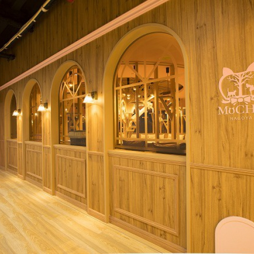 ねこカフェ MoCHA 名古屋栄店