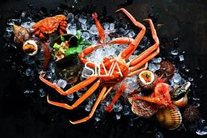 名古屋 金山駅 ダイニング SILVA シルバ
