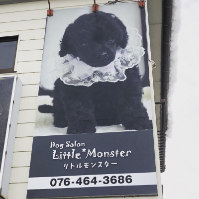 DogSalon  Little*Monsterショップ情報
