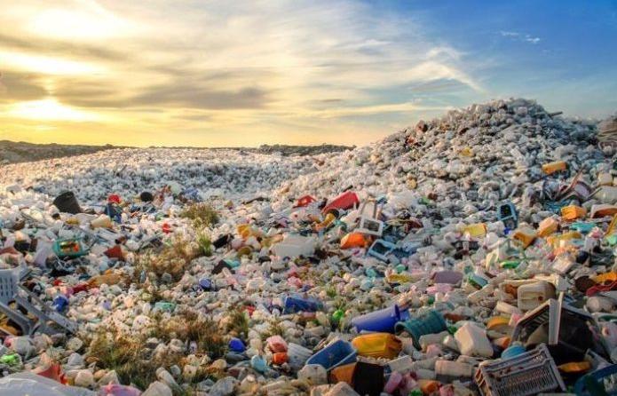 プラスチック 問題 海洋 ゴミが海の生物数を上回る?海洋プラスチック問題とは。