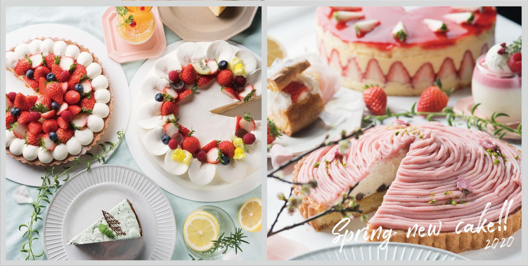 春のケーキが彩り華やかに登場!